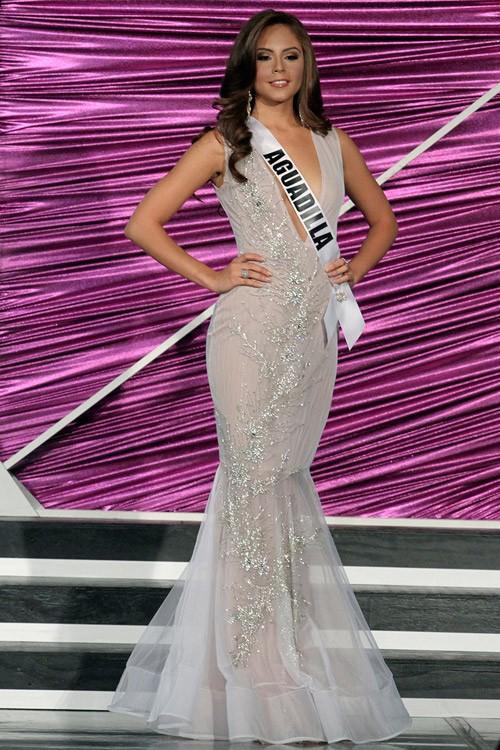 Chân dung Hoa hậu Hoàn vũ Puerto Rico bị 'truất ngôi vì chảnh' - ảnh 7