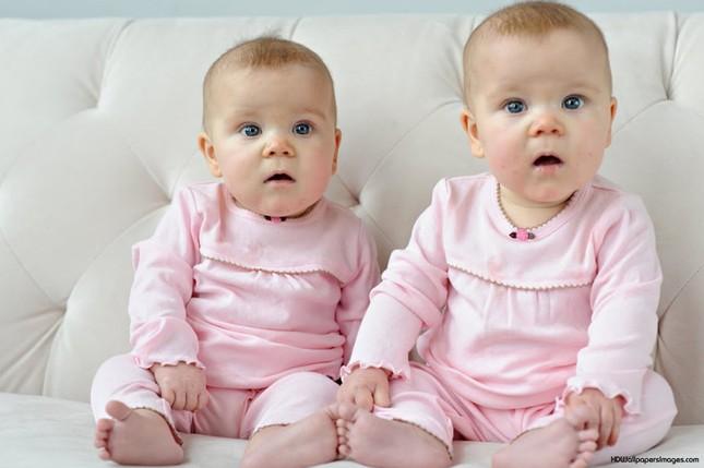 Vì sao phụ nữ có thể sinh ra cặp sinh đôi khác…bố? - ảnh 1