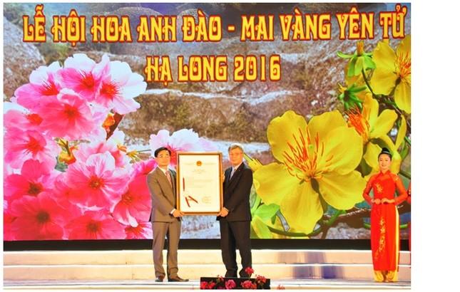 Khai mạc Lễ hội Hoa anh đào - Mai vàng Yên Tử, Hạ Long năm 2016 - ảnh 4