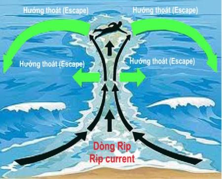 Vũng Tàu, 'lời cảnh báo' từ thủy nạn gia tăng - ảnh 4