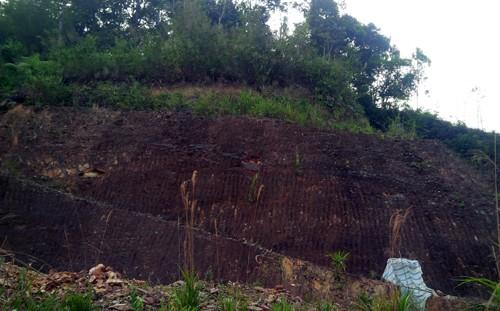 Bí thư huyện đào xuyên núi để 'làm hầm rượu' - ảnh 3