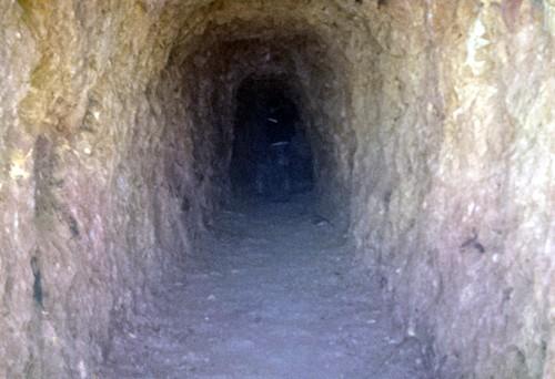 Bí thư huyện đào xuyên núi để 'làm hầm rượu' - ảnh 1