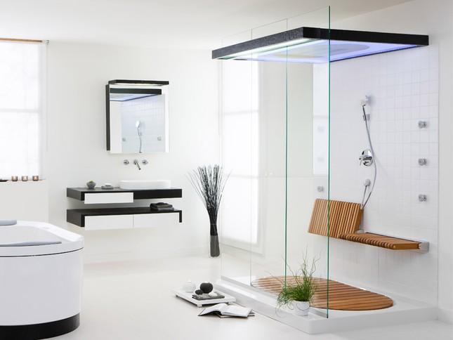 Khách sạn lắp tường kính trong suốt cho nhà tắm với mục đích gì? - ảnh 1