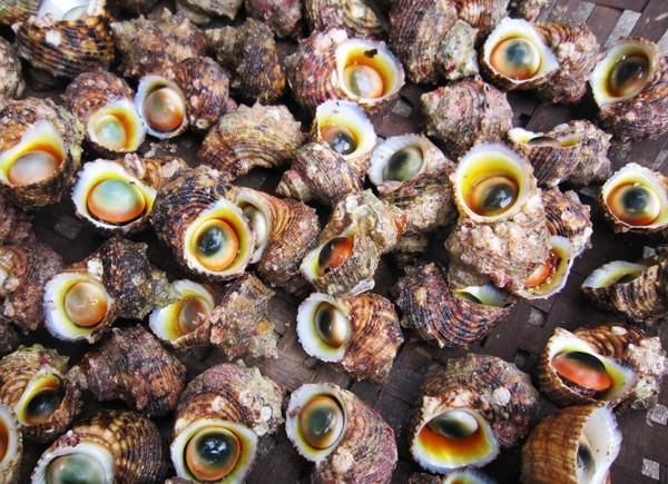 Cẩm nang ẩm thực cho dân du lịch Lý Sơn - ảnh 2