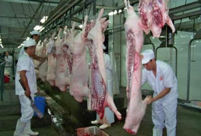 Người Việt đã ăn 6 tấn chất cấm trong thịt heo? - ảnh 1