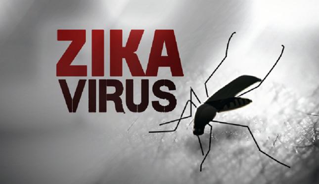 Vì sao Zika có khả năng lây lan nhanh ở Việt Nam? - ảnh 1