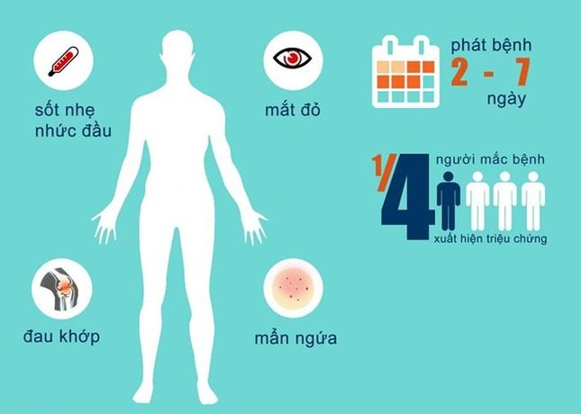 Vì sao Zika có khả năng lây lan nhanh ở Việt Nam? - ảnh 2