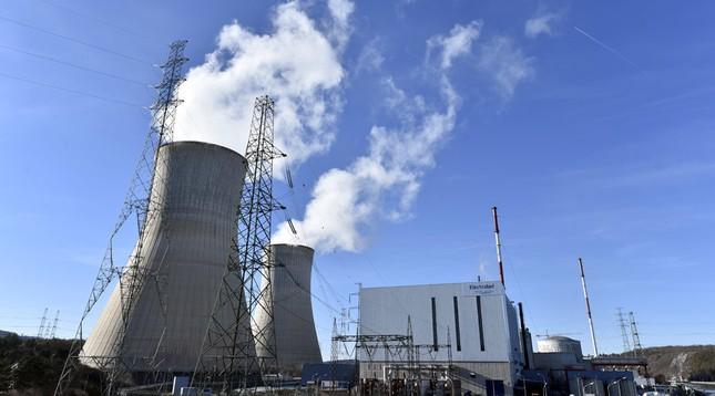 Nhân viên nhà máy điện hạt nhân Bỉ bị giết, đánh cắp thẻ an ninh - ảnh 1