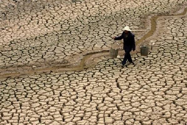 Khô hạn, xâm nhập mặn ở ĐBSCL đặc biệt nguy hiểm trong tháng 4 - ảnh 1