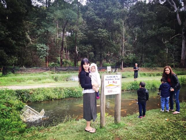 Lý Hải - Minh Hà cùng các con du lịch khám phá xứ sở chuột túi - ảnh 8