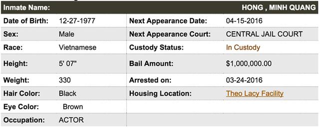 Minh Béo bị bắt ở Mỹ, hầu tòa ngày 15/4 vì bị cáo buộc 3 tội danh - ảnh 2