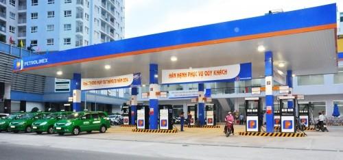 Đề nghị Bộ Công an điều tra dấu hiệu 'tư túi' tại Petrolimex - ảnh 2