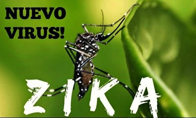 Bộ Y tế khẳng định đến 30/3 Việt Nam chưa có ca nhiễm virus Zika - ảnh 1