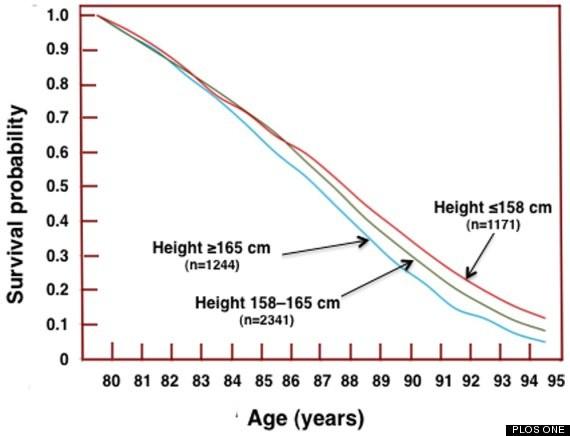 Nghiên cứu khoa học: Người càng lùn sẽ càng sống thọ - ảnh 2