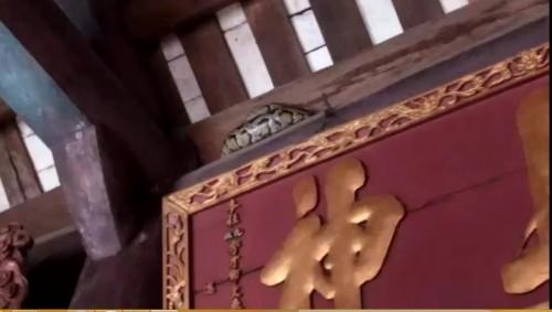 Hãi hùng nhìn con trăn 'mắc võng' trên ngôi đền ở Nam Định - ảnh 1
