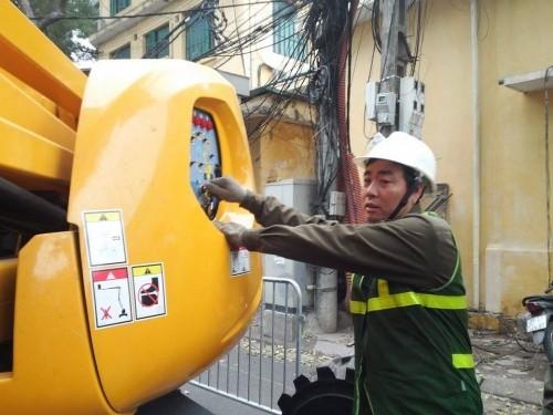 Hà Nội: Nhập máy, mời chuyên gia Singapore phục vụ cắt tỉa cây - ảnh 2