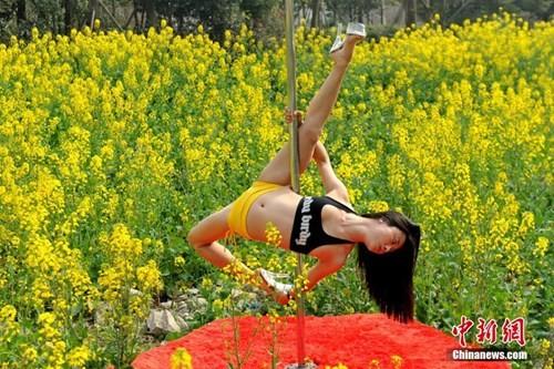 Thiếu nữ Trung Quốc múa cột 'mê đắm' giữa sắc hoa vàng - ảnh 5