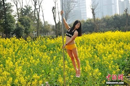 Thiếu nữ Trung Quốc múa cột 'mê đắm' giữa sắc hoa vàng - ảnh 6