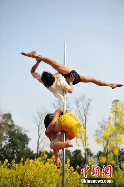 Thiếu nữ Trung Quốc múa cột 'mê đắm' giữa sắc hoa vàng - ảnh 1