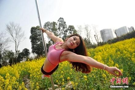 Thiếu nữ Trung Quốc múa cột 'mê đắm' giữa sắc hoa vàng - ảnh 4