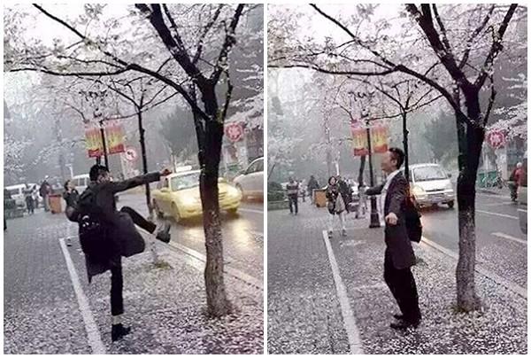 Bị bắt vì đạp cây, tạo 'mưa' hoa anh đào chụp ảnh tự sướng - ảnh 1