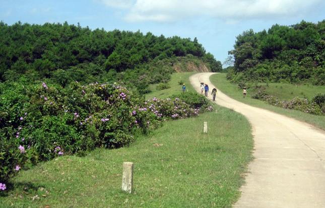 Khám phá Vĩnh Thực, đảo xa nơi địa đầu tổ quốc - ảnh 4