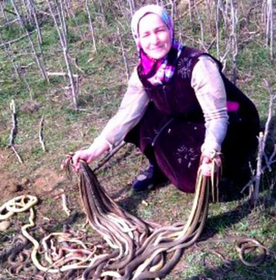 Cụ bà 60 tuổi đập chết liên tiếp 80 con rắn gây tranh cãi ở Nga - ảnh 1
