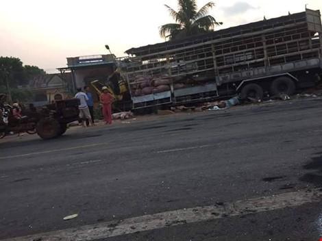 Chùm ảnh: Gần 100 con heo nằm chết la liệt sau vụ tai nạn - ảnh 7