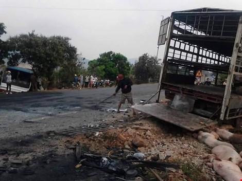 Chùm ảnh: Gần 100 con heo nằm chết la liệt sau vụ tai nạn - ảnh 8