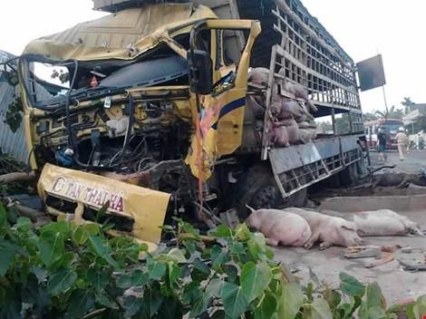 Chùm ảnh: Gần 100 con heo nằm chết la liệt sau vụ tai nạn - ảnh 9