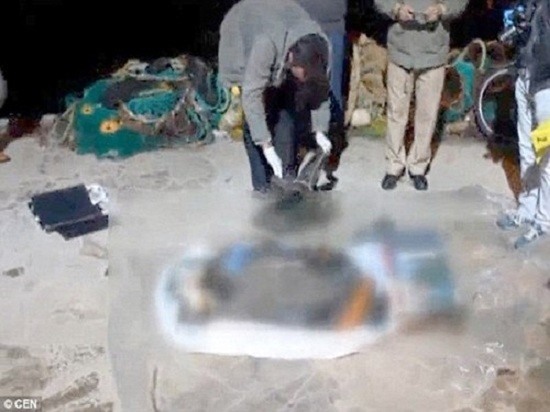 Xót xa thi thể bé gái tị nạn 3 tuổi mắc vào lưới đánh cá - ảnh 1