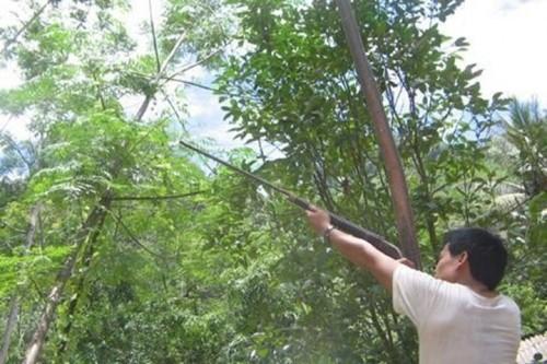 Hà Nội: Tử vong do trúng đạn tự chế lúc đi săn - ảnh 1