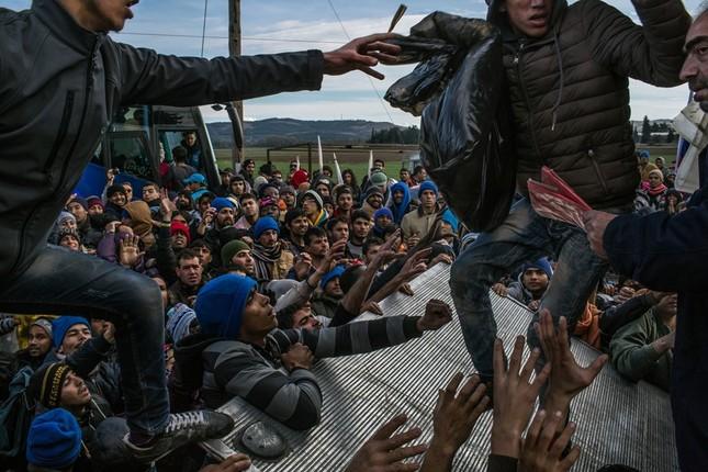 Chùm ảnh hành trình của người tị nạn đoạt giải Pulitzer 2016 - ảnh 7