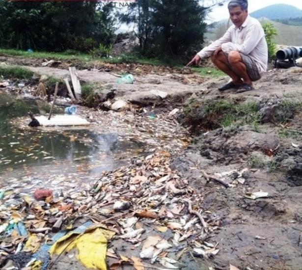Huế: Hoang mang cảnh cá chết nổi trắng mặt sông  - ảnh 2