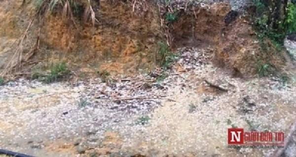 Quảng Nam: Bất ngờ xảy ra mưa đá suốt 2 giờ giữa ngày nắng nóng - ảnh 1