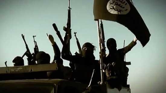 Phiến quân IS bán cá, xe hơi để kiếm thêm thu nhập - ảnh 1