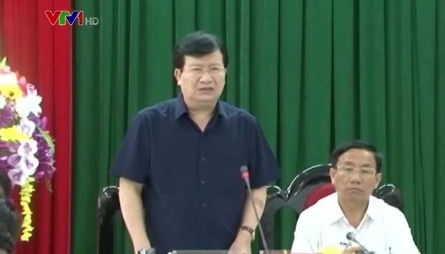 Phó Thủ tướng chỉ đạo thu mua hết cá sạch cho ngư dân - ảnh 1