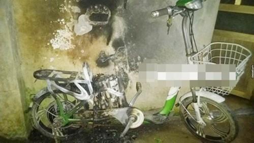 Nguy cơ cháy nổ từ xe đạp điện bán chạy số 1 Việt Nam khi sạc pin - ảnh 1