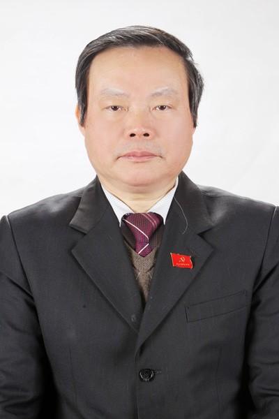 Lý lịch 2 tân Phó Chủ tịch Quốc hội Đỗ Bá Tỵ và Phùng Quốc Hiển - ảnh 2