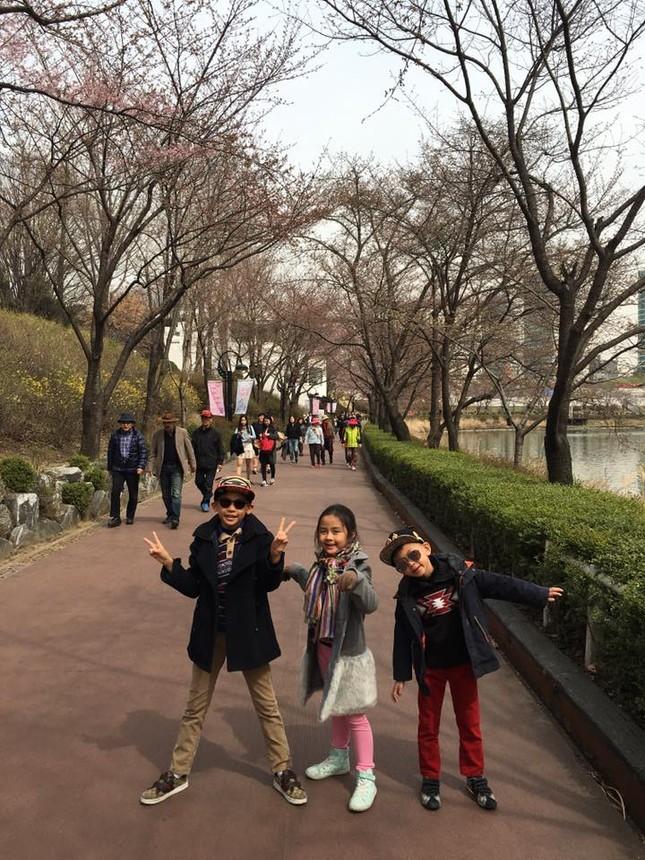Hoa hậu Hà Kiều Anh rạng ngời cùng các con ngắm hoa anh đào - ảnh 4
