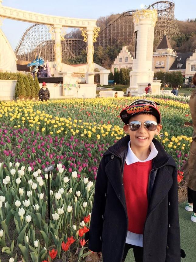 Hoa hậu Hà Kiều Anh rạng ngời cùng các con ngắm hoa anh đào - ảnh 3