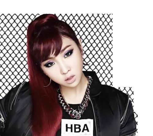 Fan 'náo loạn' vì Minzy chuẩn bị rời YG, 2NE1 tan rã - ảnh 2