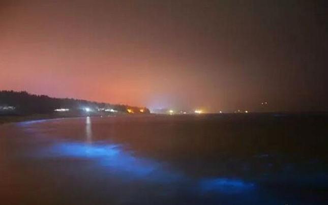 Những ánh sáng xanh huyền bí xuất hiện ở bờ biển Trung Quốc - ảnh 3