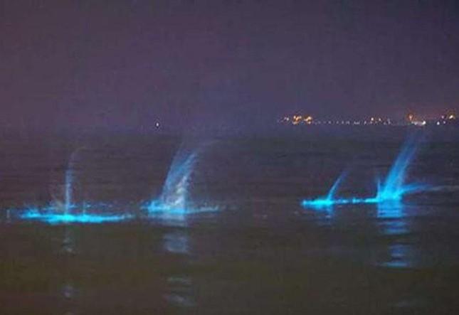Những ánh sáng xanh huyền bí xuất hiện ở bờ biển Trung Quốc - ảnh 5