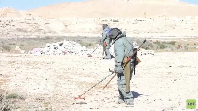 Video: Chuyên gia, robot Nga tháo gỡ 1.500 quả mìn ở Palmyra - ảnh 1