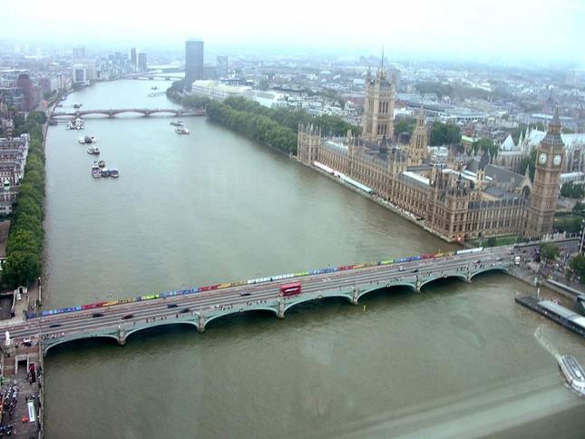 Sinh vật kì bí nổi trên mặt nước sông Thames - ảnh 1