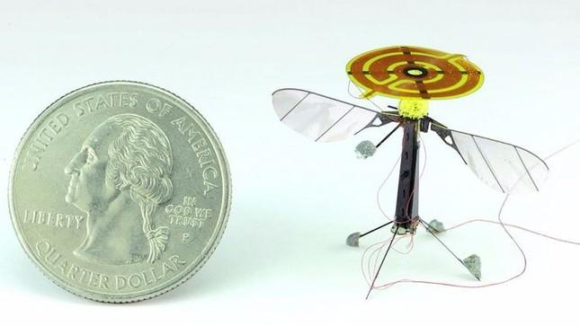 Robot do thám nhỏ nhất thế giới - ảnh 2