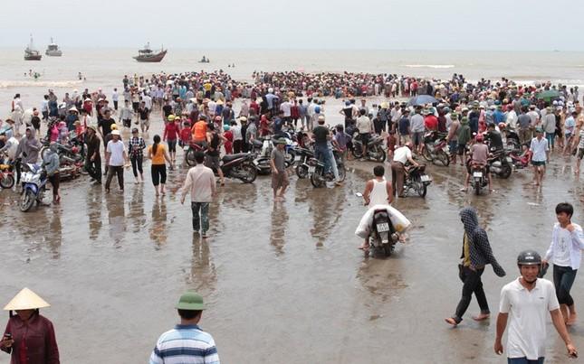 Giải cứu cá voi khổng lồ mắc kẹt ở bờ biển Nghệ An - ảnh 3