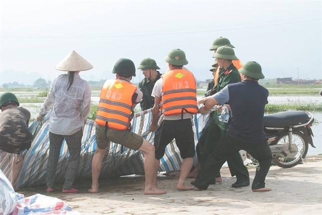 Ninh Bình huy động tổng lực giúp dân gặt lúa chìm trong biển nước - ảnh 6
