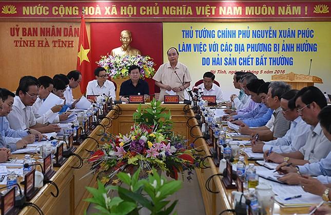 Thủ tướng chỉ đạo giải quyết sự cố hải sản chết bất thường - ảnh 1